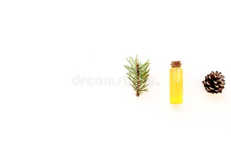 Sörja nödvändig olja i flaskor på vitt utrymme för kopian för den bästa sikten för bakgrund Modellen med sörjer filialen och kott royaltyfria bilder