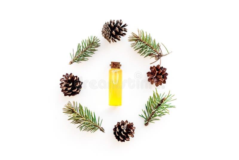 Sörja nödvändig olja i flaskor på vitt utrymme för kopian för den bästa sikten för bakgrund Modellen med sörjer filialen och kott royaltyfri foto