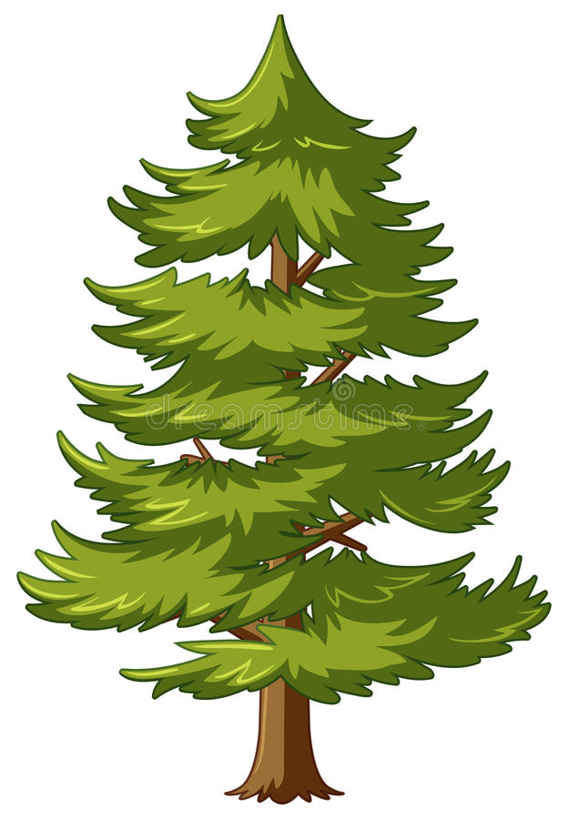 Sörja trädet med gröna sidor royaltyfri illustrationer