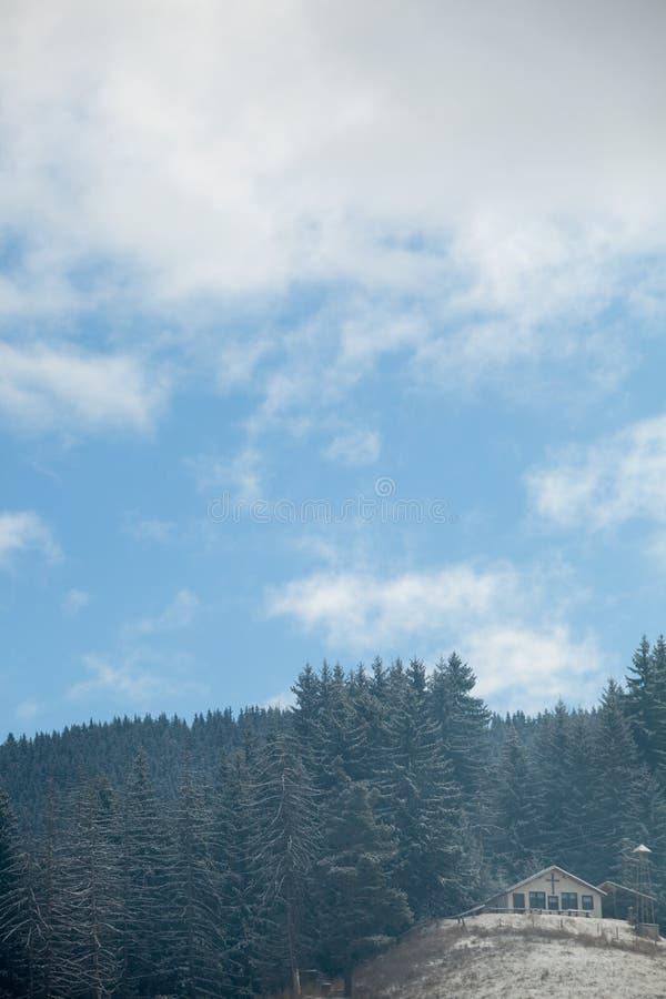 Sörjer på berg i vintertid fotografering för bildbyråer