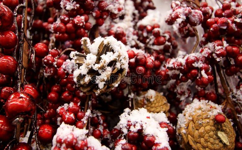 Sörjer röda bär för julgarnering och trädkottar under snöräkningen royaltyfri foto