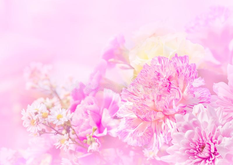 Söt färg av den härliga blomman för att gifta sig fotografering för bildbyråer
