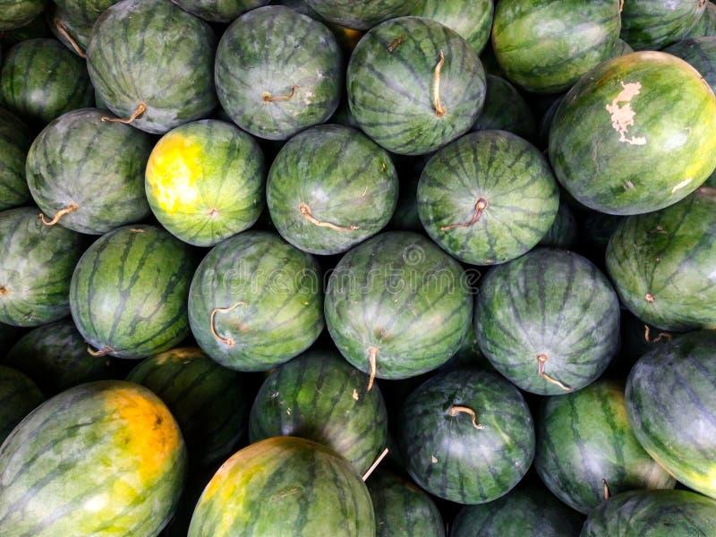 Söt grön vattenmelon i en grupp arkivfoton