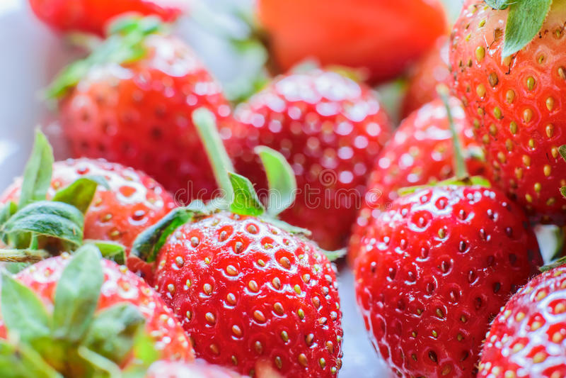 söt jordgubbe ny jordgubbe Rött strewberry royaltyfri fotografi