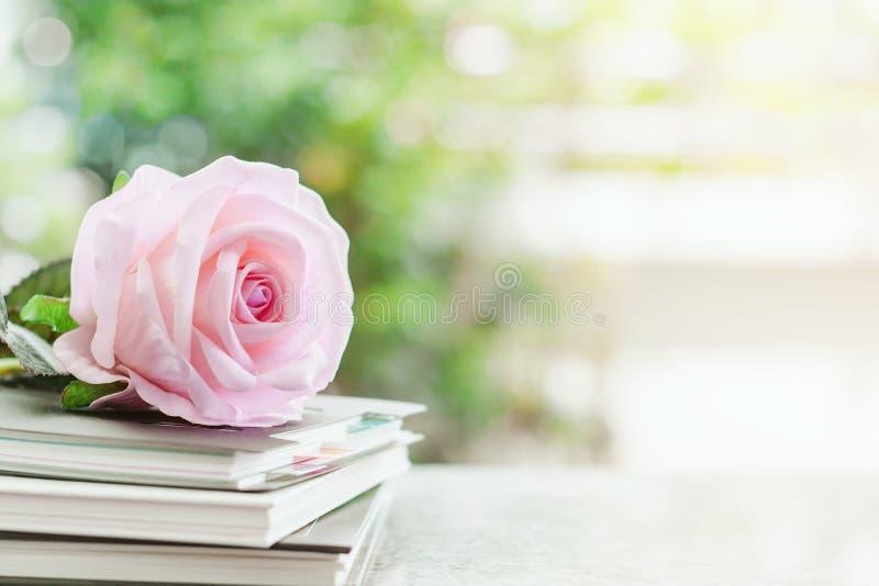 Söt rosa färgrosblomma på spiralanteckningsböcker arkivbild