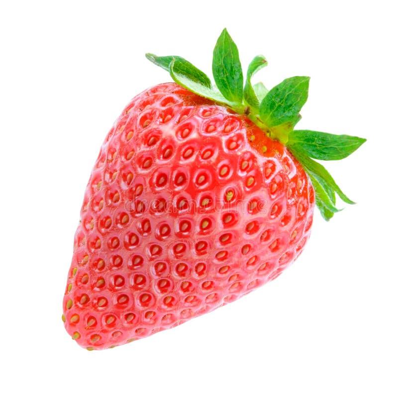 Söt saftig jordgubbe som isoleras på vit bakgrund Sunt matbegrepp för sommar royaltyfri fotografi