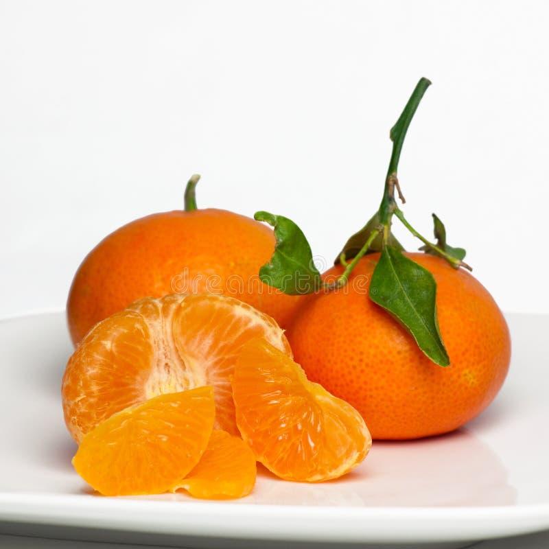 söt saftig reticulata för citrusa clementines fotografering för bildbyråer