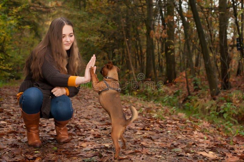 Söt tonåring och hennes hund royaltyfria bilder