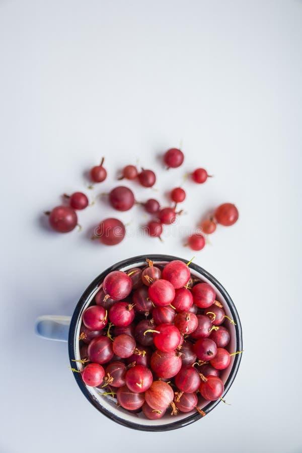Söta bär efterrätt, krusbär, sommarbär Sund och naturlig mat, bantar näring Härliga nya röda bär arkivfoto