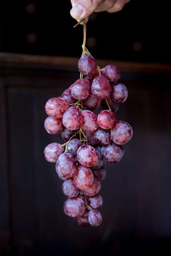 Söta druvor för vin arkivfoto