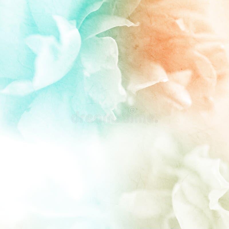 Söta färgrosor blommar i mjuk och suddighetsstil på mullbärsträdpapperstextur royaltyfri fotografi