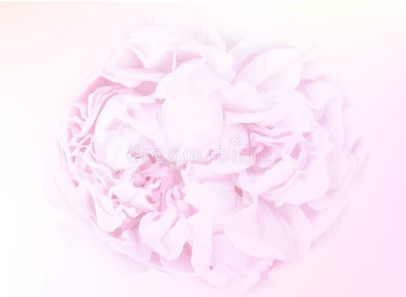 Söta färgrosor i mjuk färg och suddighet utformar för bakgrund stock illustrationer