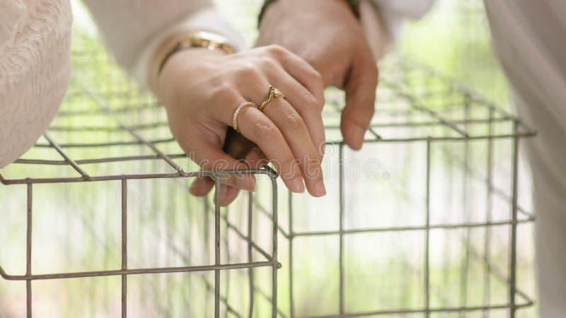 Söta parinnehavhänder royaltyfria bilder