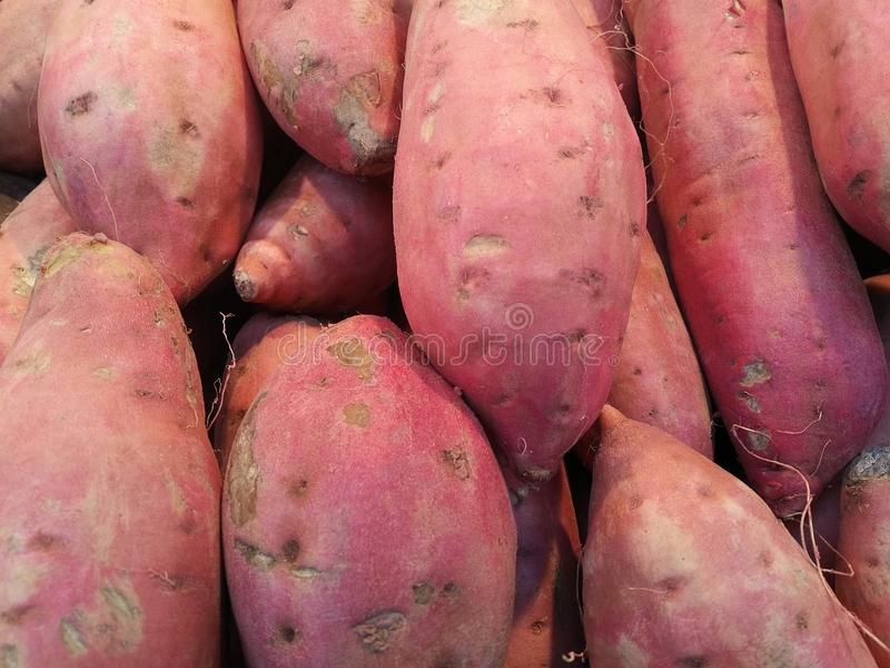 söta potatisar arkivbilder