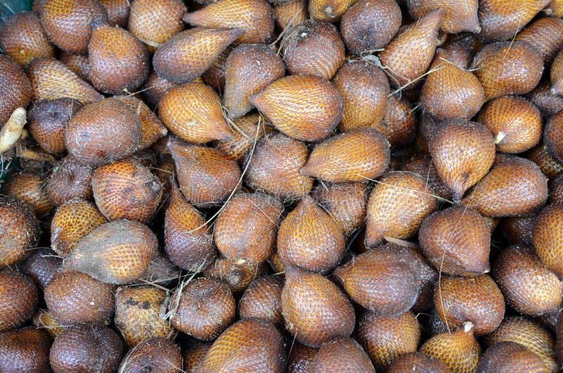 Söta tropiska frukter av gömma i handflatan frukt för gräsplanormen royaltyfri foto