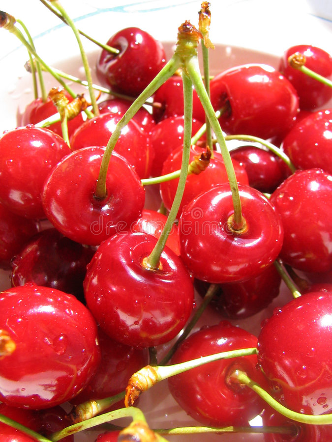 sött Cherry royaltyfria foton