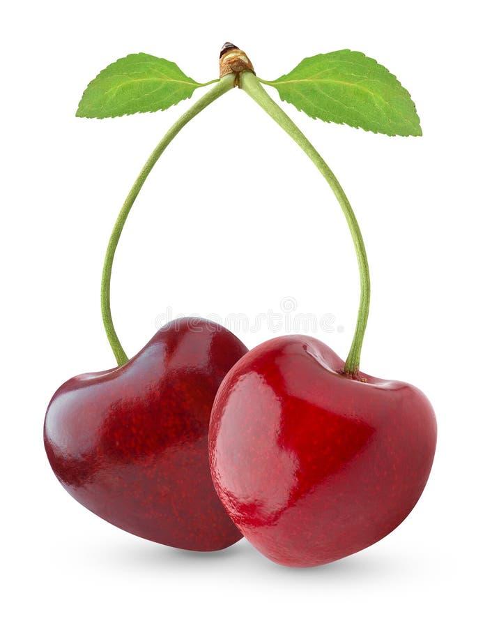 sött Cherry arkivfoton