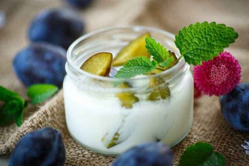 Sött mjölka yoghurten med nya plommoner arkivbilder