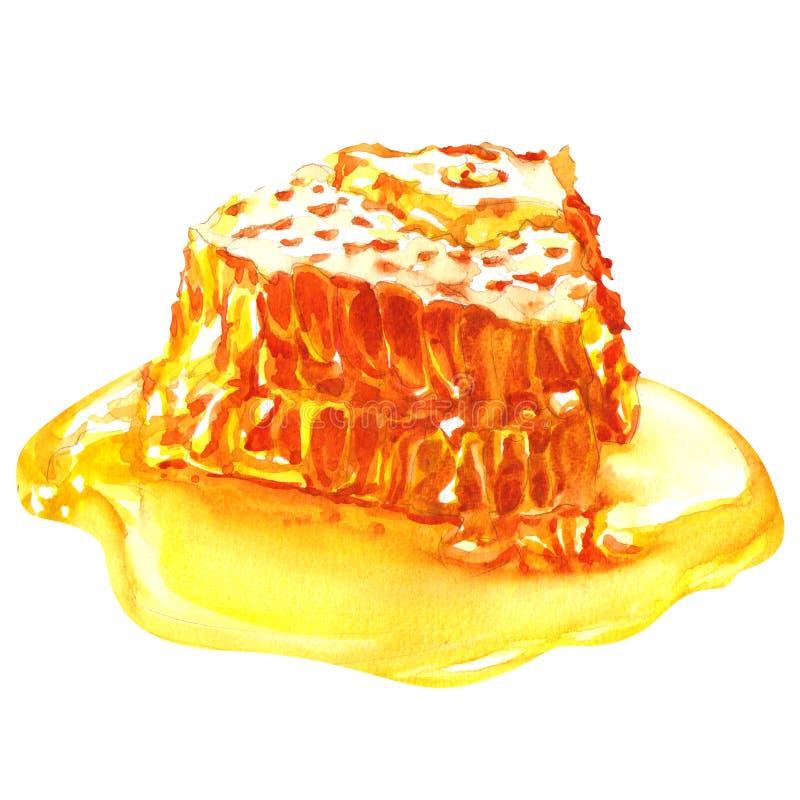 Süße Bienenwaben mit dem Honig, lokalisiert auf Weiß vektor abbildung