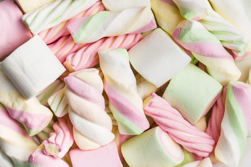 Süße bunte Eibische stockbilder