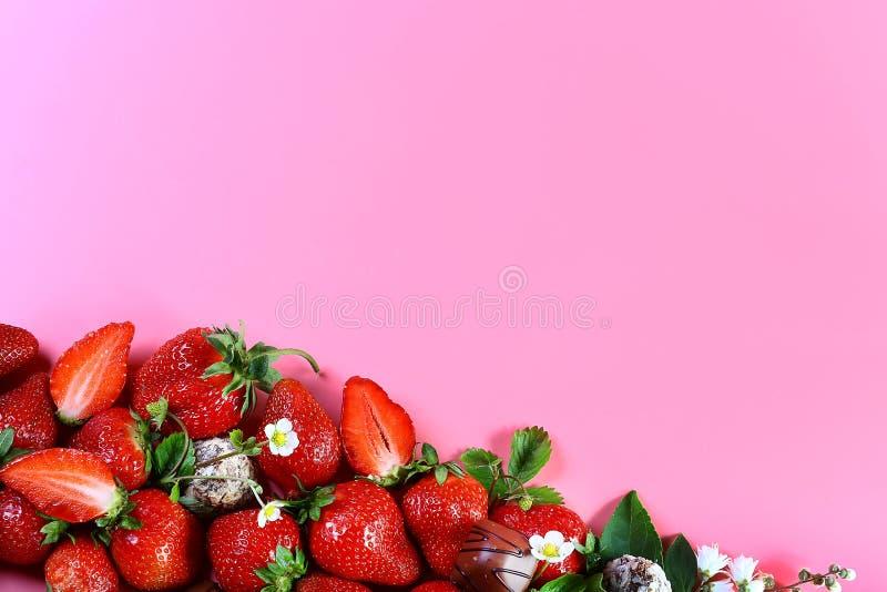 Süße Erdbeere an der Unterseite, Pralinen, weiße Blume auf rosa Hintergrund mit Kopienraum Ansicht von oben, Satz lizenzfreie stockbilder