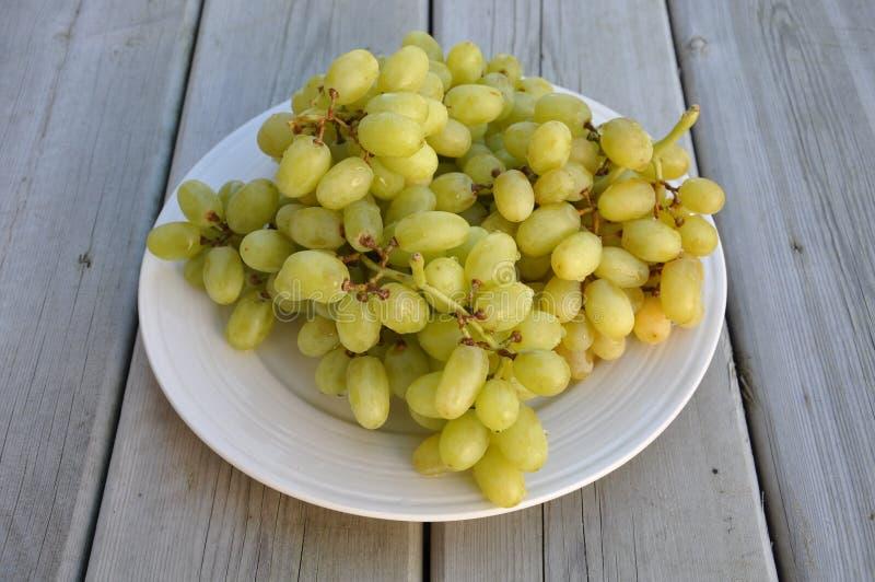 Süße grüne Trauben stockfoto
