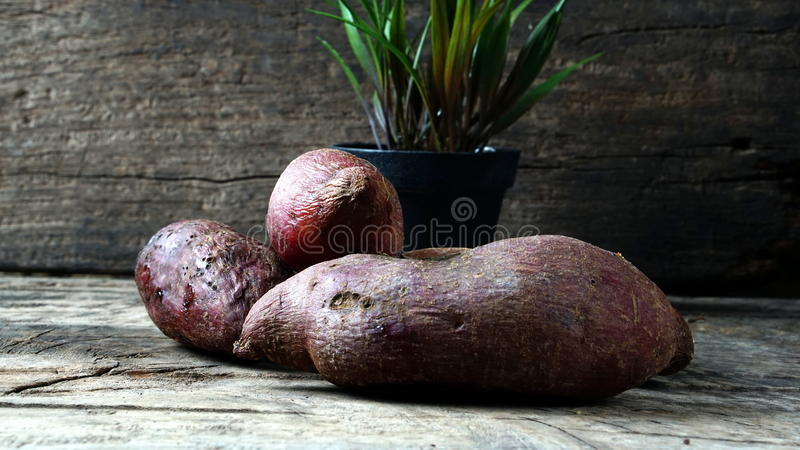 Süße Kartoffel stockfotografie