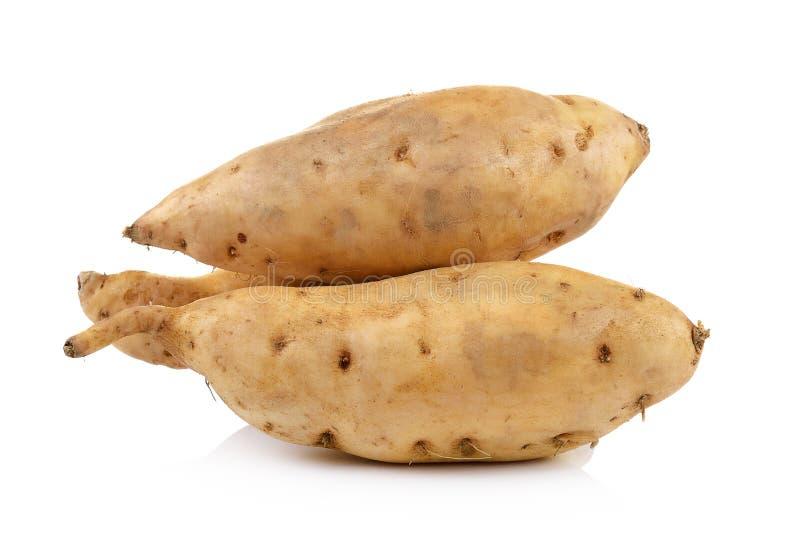 Süße Kartoffel getrennt auf weißem Hintergrund lizenzfreie stockfotografie
