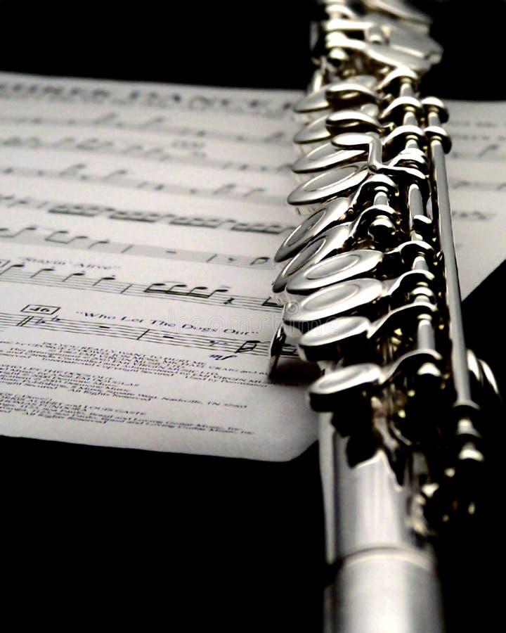 Süße Musik. lizenzfreie stockfotos