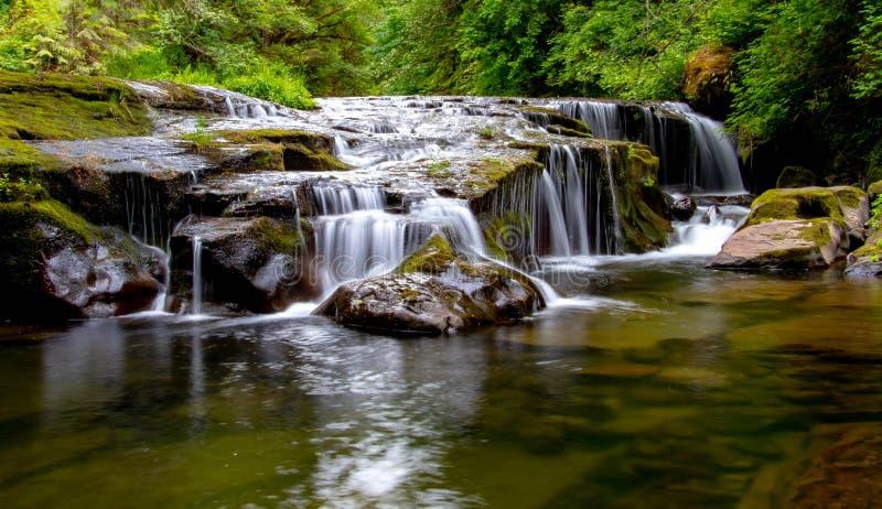 Süße Nebenflussfallhöhe weg mit haarscharfem Wasser unten stockbilder