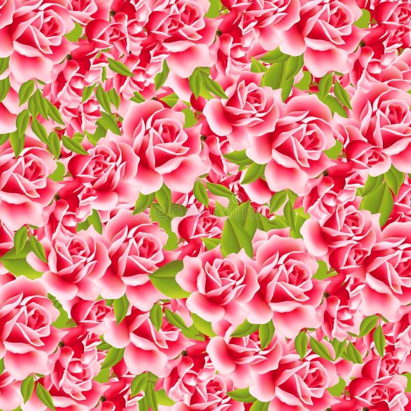 Süße Rosen vektor abbildung