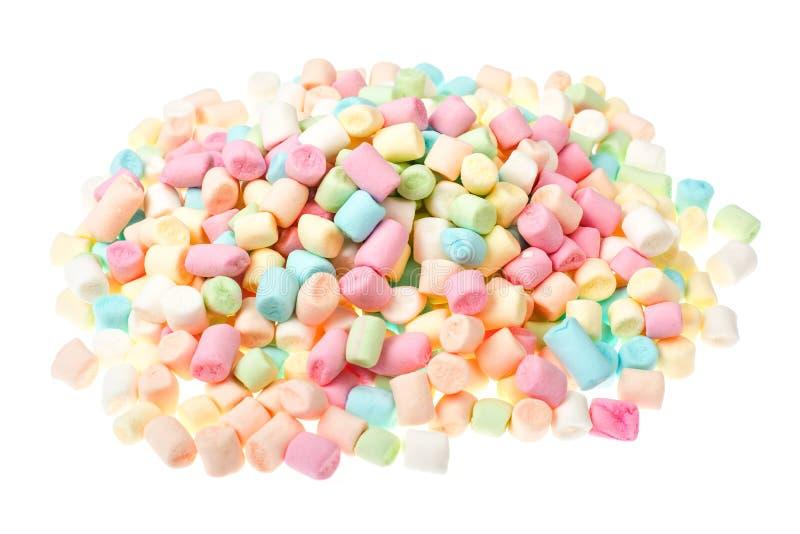 Süßer geschmackvoller farbiger Eibisch Mini auf Weiß stockbilder