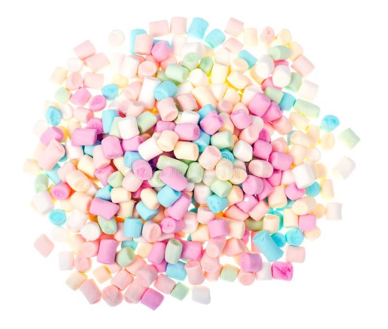 Süßer geschmackvoller farbiger Eibisch Mini auf Weiß stockfoto