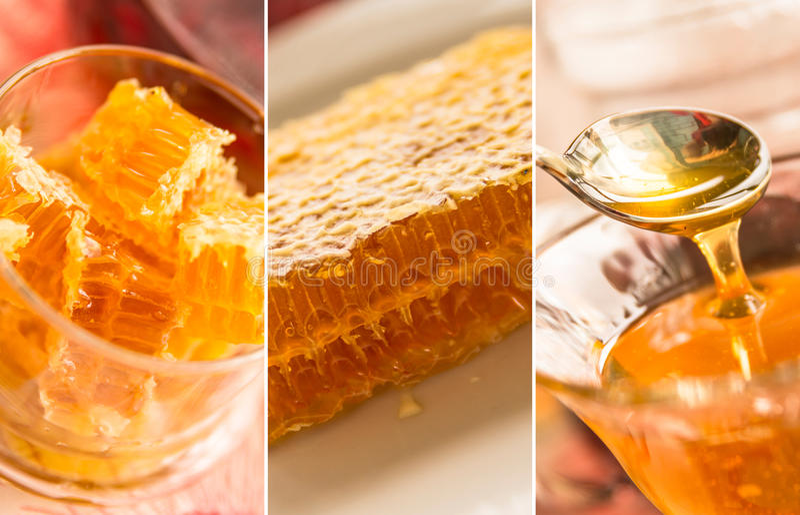 Süßer Honey Collage stockfotografie