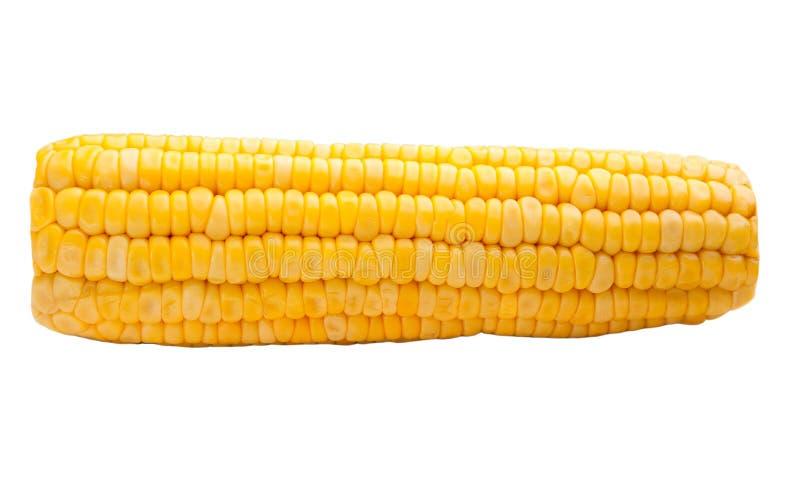 Süßer Mais getrennt lizenzfreie stockbilder