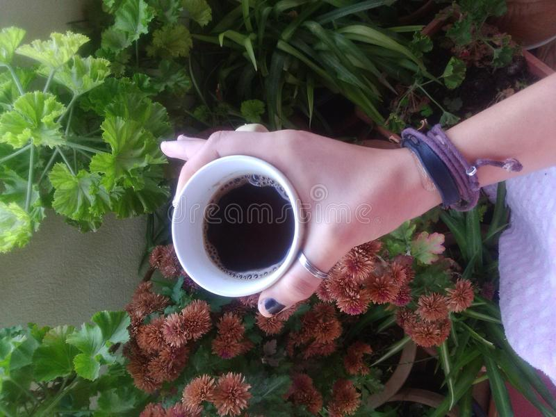 Süßer Morgenkaffee lizenzfreie stockbilder
