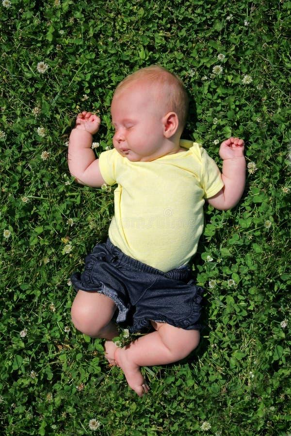 Süßes Baby, das draußen auf dem Klee-Gebiet schläft stockbild