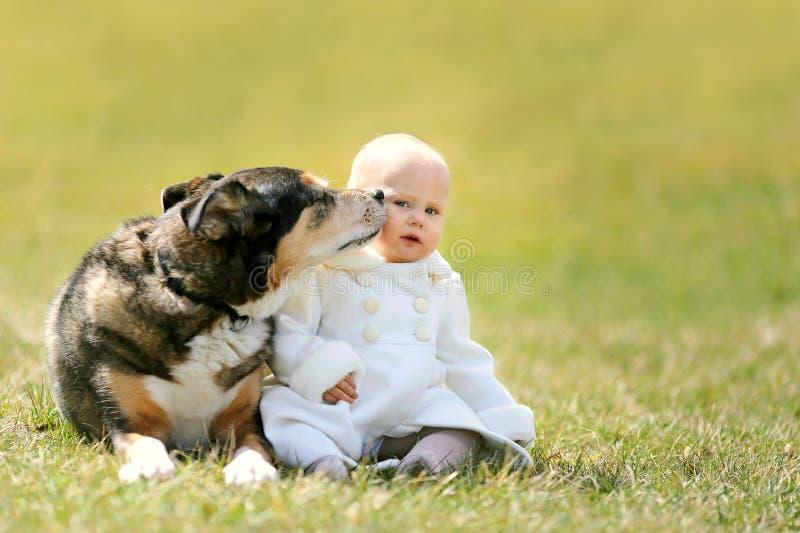 Süßes Baby, das Kuss vom Haustier-Schäferhund Dog Outside erhält stockfoto