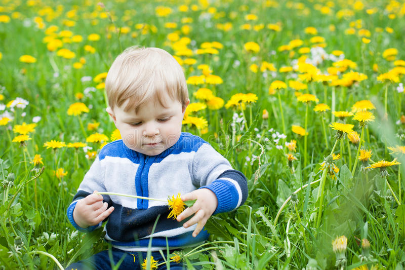 Süßes Baby im gelben Blumenfeldsommer stockfotos