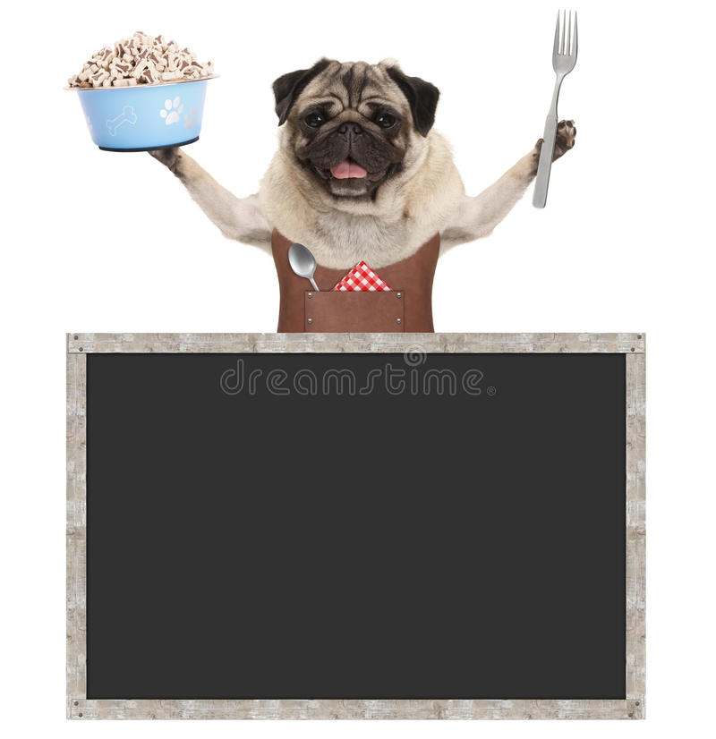 Süßes lächelndes Pughündchen, das Lebensmittelschüssel mit Festlichkeiten hält und Lederschurz, mit leerem Tafelzeichen trägt stockbild
