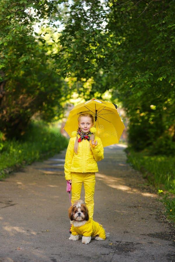 Süßes Mädchen in der gelben Jacke unter einem Regenschirm mit dem Hund, der in das PA geht lizenzfreie stockfotos