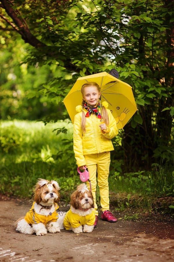 Süßes Mädchen in der gelben Jacke unter einem Regenschirm mit den Hunden, die in den Park gehen stockfoto