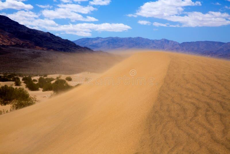 Süßhülsenbaum-Dünenwüste im Death- Valleywindsandsturm stockfotografie