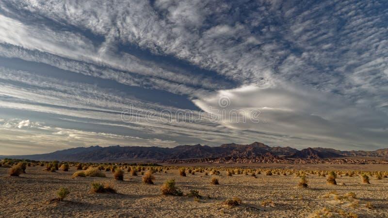Süßhülsenbaum-Sanddünen in Death Valley stockbilder