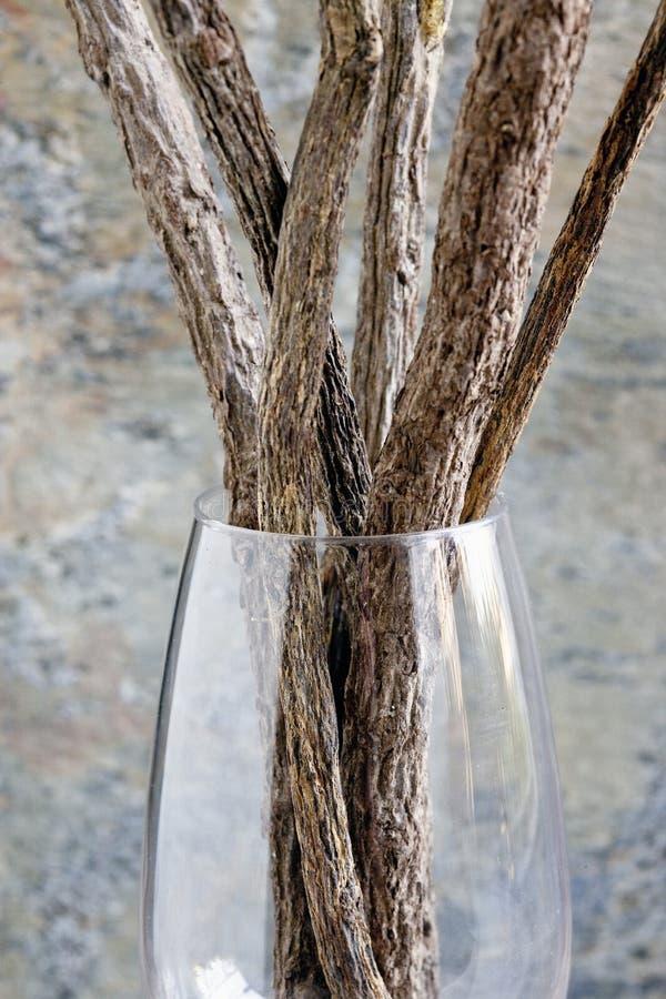Süßholzsteuerknüppel stockfotografie