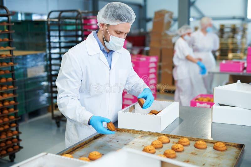 SüßigkeitenArbeiter-Verpackungsgebäck in Kasten lizenzfreie stockfotos