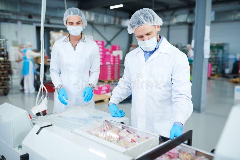 Süßigkeitenfabrikangestellt-Verpackungskästen in Plastikfilm stockfotografie