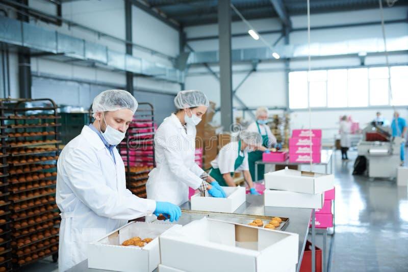 Süßigkeitenfabrikangestellte, die Gebäck in Kästen setzen lizenzfreie stockfotografie