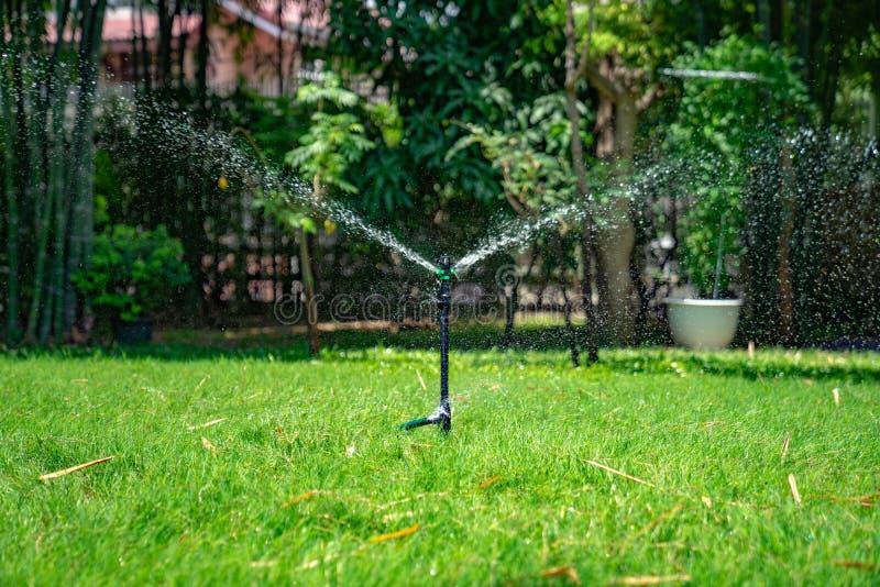 Süßwasserspritzen von besprühen Pfostenbank in der Rasenfläche im Garten im Freien stockfoto