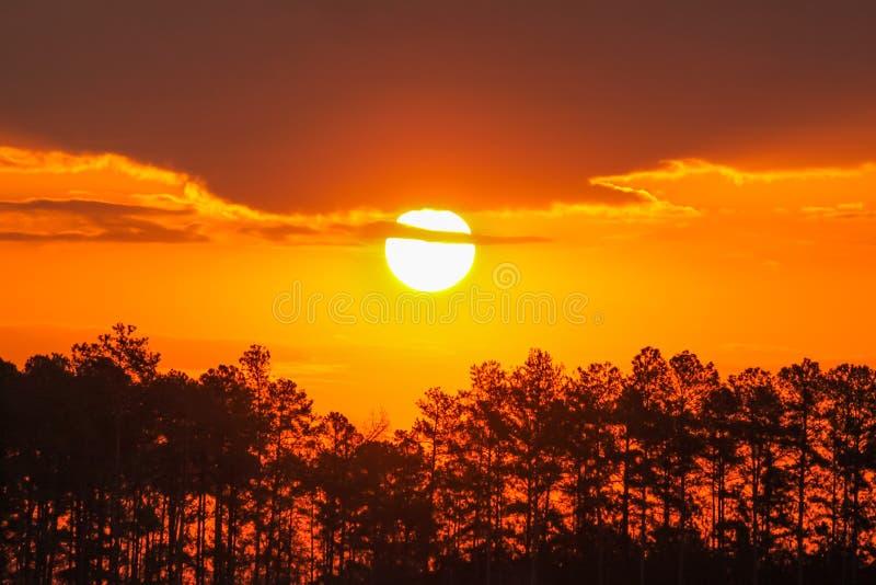 Süd-Carolina Sunset Trees Lake Hartwell stockfotografie